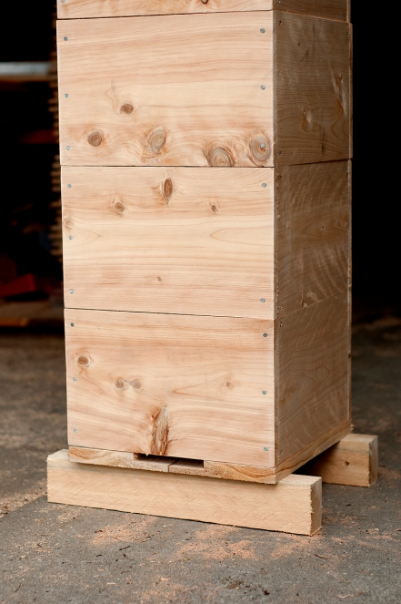 Lawson's cypress boxes in the workshop
