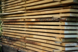 Cedar stacked to dry