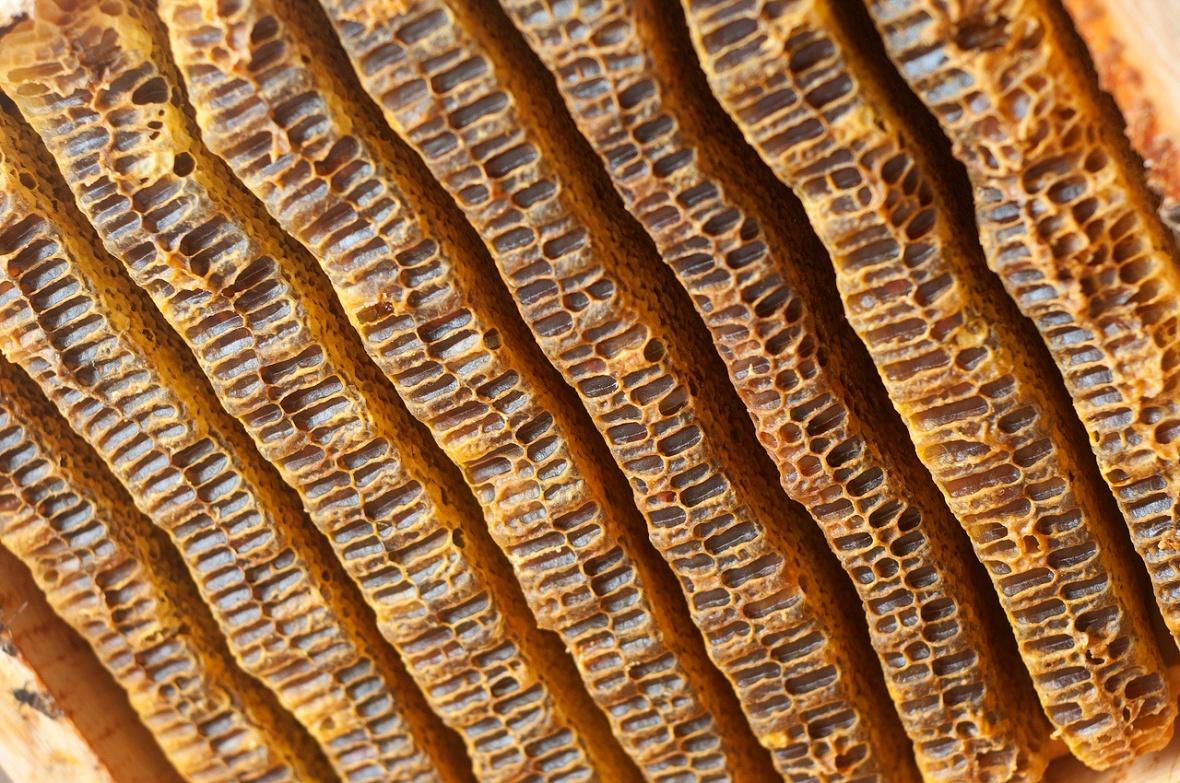 honey comb capped